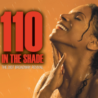 110 in the Shade 2007 Broadway Cast CD